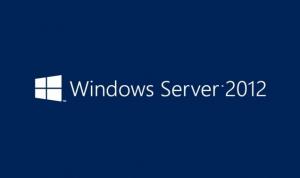 Windows Server a fait l'objet d'attaques ciblées suite à l'apparition d'une vulnérabilité critique sur toutes ses versions.