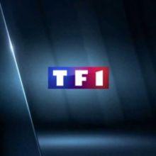 Début janvier, le site de TF1 a été la cible d'une attaque informatique menée par un groupe de hackers se faisant appeler Linker Squad.