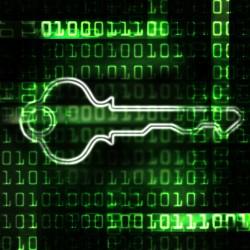 Les hackers demandent alors une rançon en bitcoins en échange de la clé permettant de déchiffrer les données.