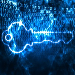 La cybersécurité intéresse surtout les entreprises en pointe, les entreprises classiques se concentrant notamment sur le centre de leur métier.