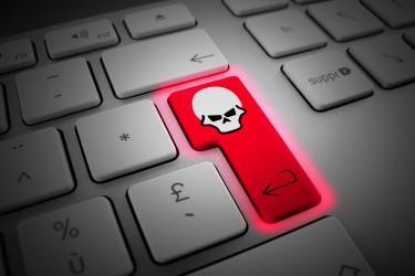 Le prix des failles « Zéro day » est lié à leur rareté. Seules 18 attaques exploitant des failles zéro day ont pu, par exemple, être trouvées par deux chercheurs de Symantec entre 2008 et 2011 et suite aux collectes de données de 11 millions d'utilisateurs.