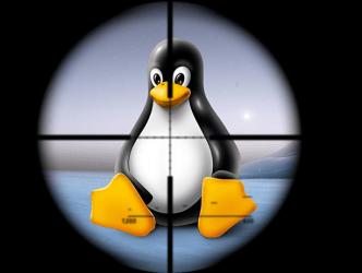 Les serveurs Linux piratés par Linux.Encoder 1